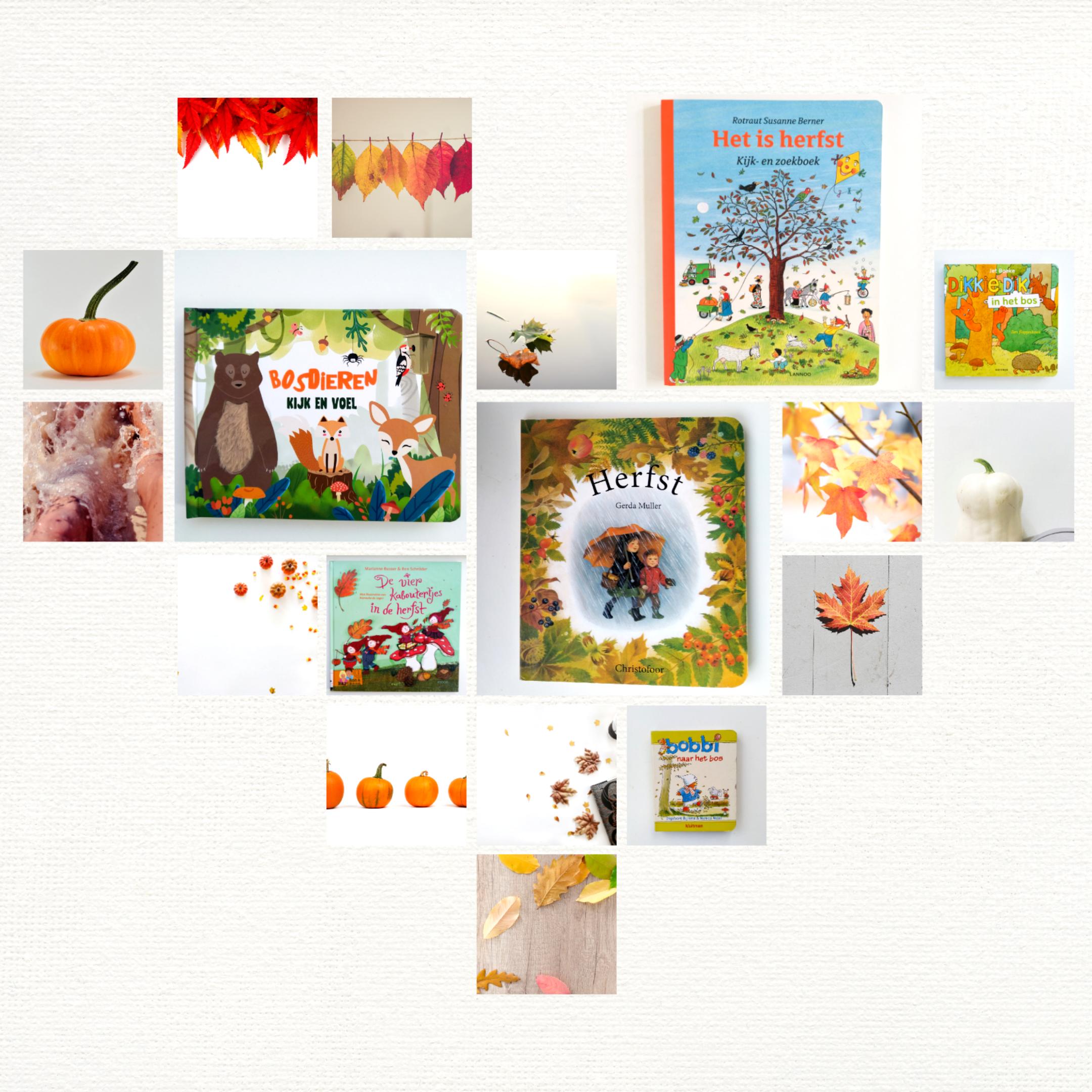 Bijzondere kinderboeken voor tijdens de herfst (0 – 3 jaar)